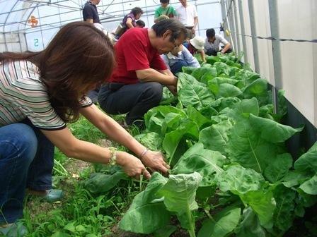 認識休閒農業與農場、民宿趴趴走